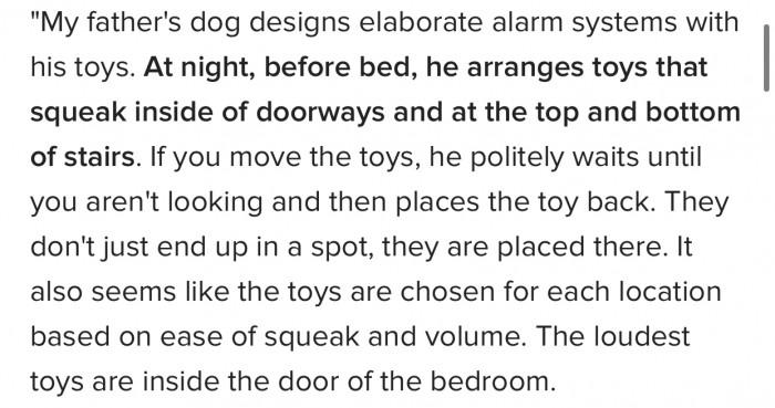 11. Elaborate alarm systems...