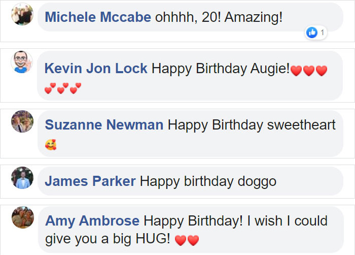 Today, Auggie's Birthday Post has over 13k comments and has been shared over 28k times!