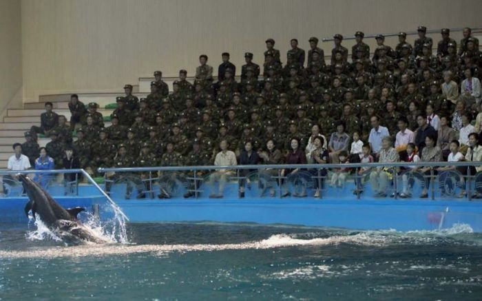 This is a photo of an aquarium Kim Jong-Un had built in Pyongyang. It's legal to photo the aquarium, but not soldiers- so this photo is illegal.