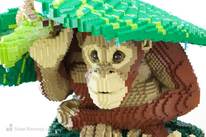 2. Orangutan In The Rain