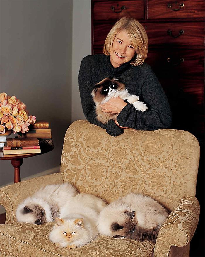 4. Martha Stewart has a fluffy cat she adores. Four fluffy cats, actually.