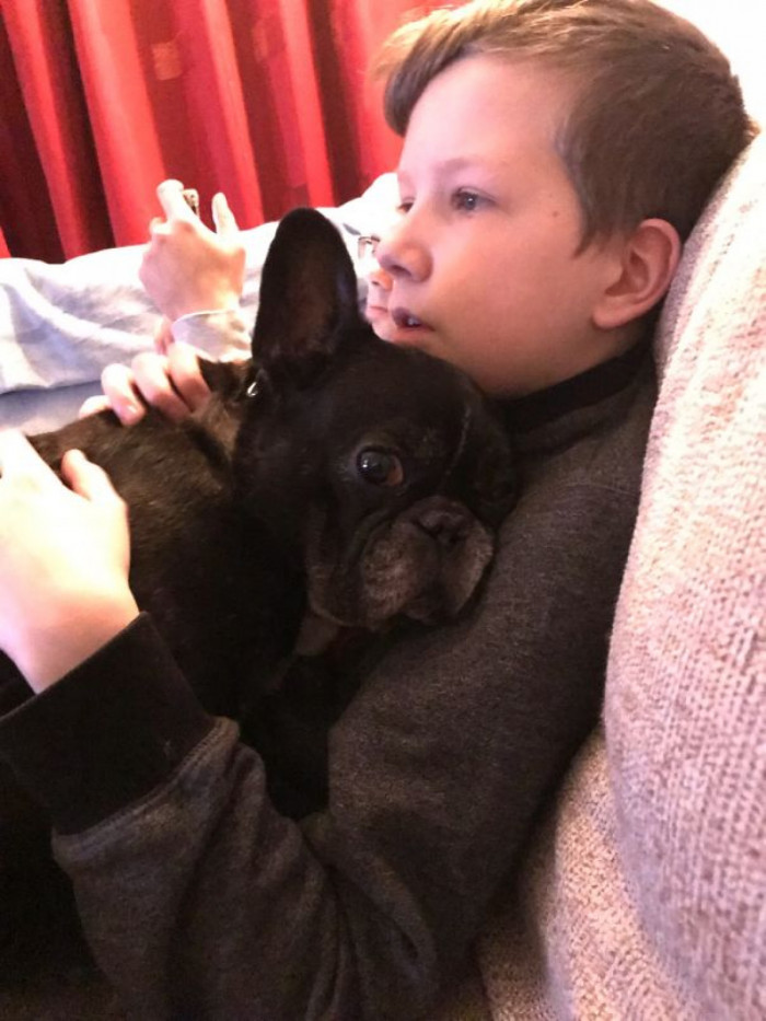 Frenchies are like little dolls. Love them!