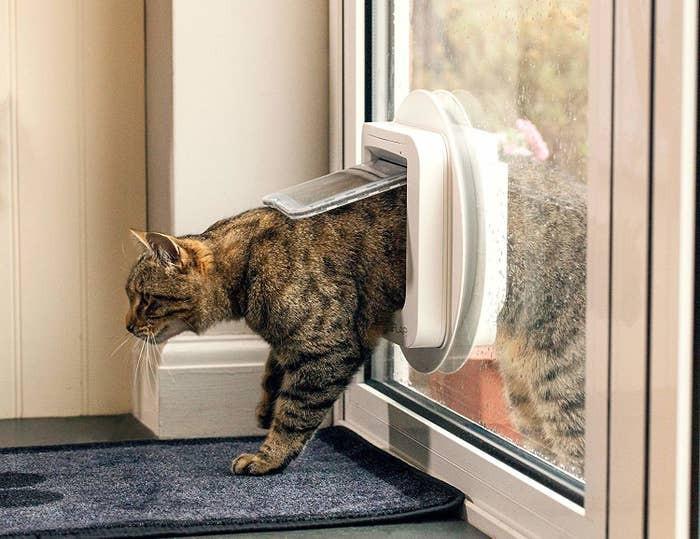 9. SureFlap Cat Flap