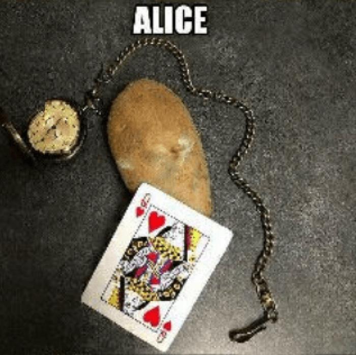 5. Alice in Wonderland