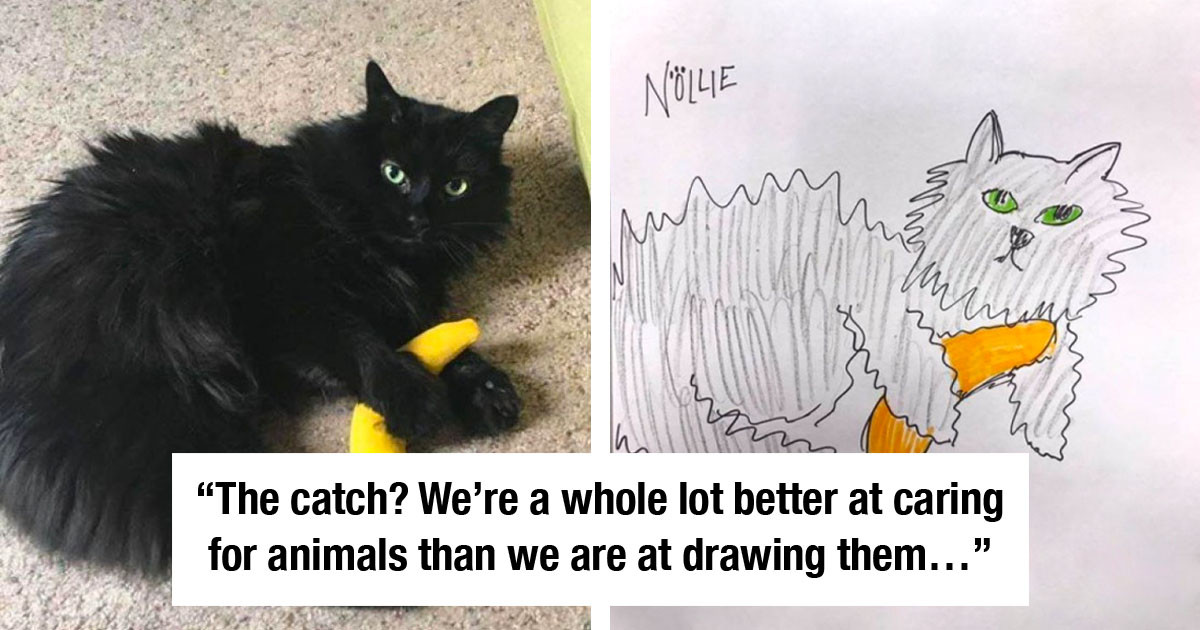 Shelter Flooded By Requests After Offering To Draw Hilariously Bad Pet Sketches To Raise Money