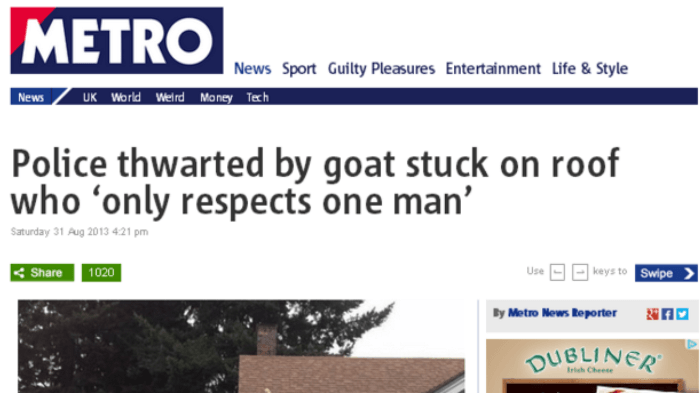 14. Like this goat, I too only respect one man