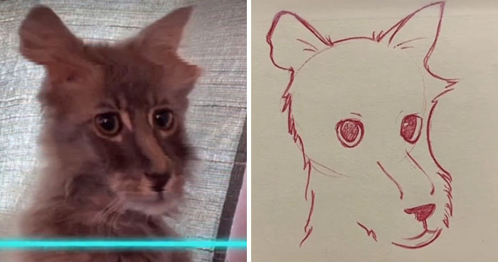17. Cat? Bear? Lion? Who can tell?