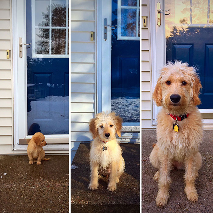 A 6 months transformation