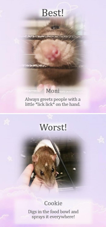 Moni is so cute!