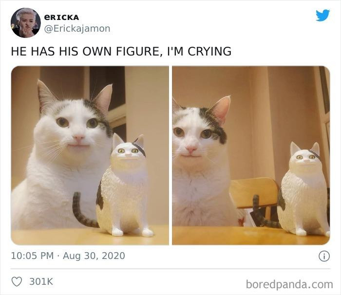 41. He earned his likeness in figurine form (but shouldn't all cats?)