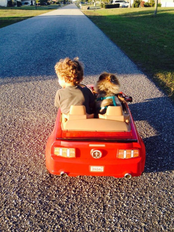 Roadtrip friend!