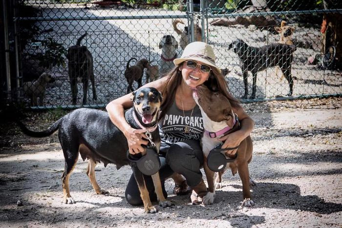 """Each of my babies deserve to have loving homes, so please, I am begging for rescues to help them!! My heart is breaking that I left so many on the streets cause I had no more room to bring them. Please.. Please!!"""