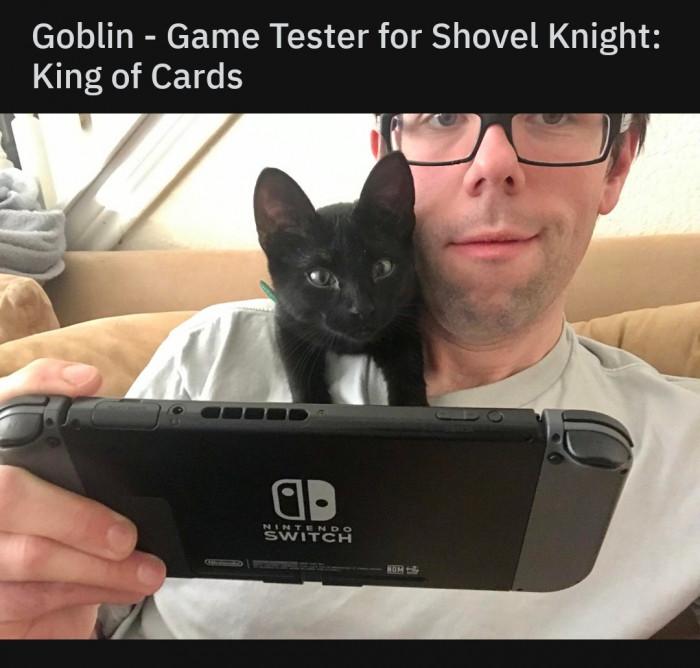 20. Game Tester
