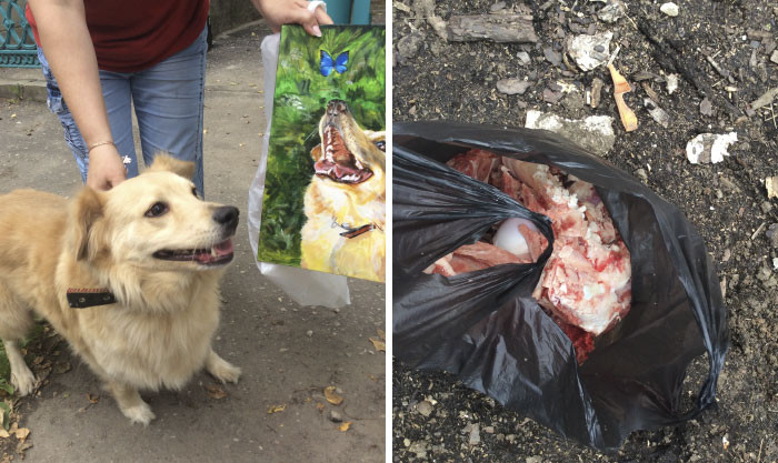 This family brought 10kg of beef bones!
