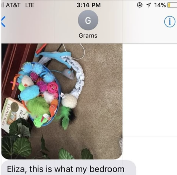She sent a picture of all of Fern's toys...