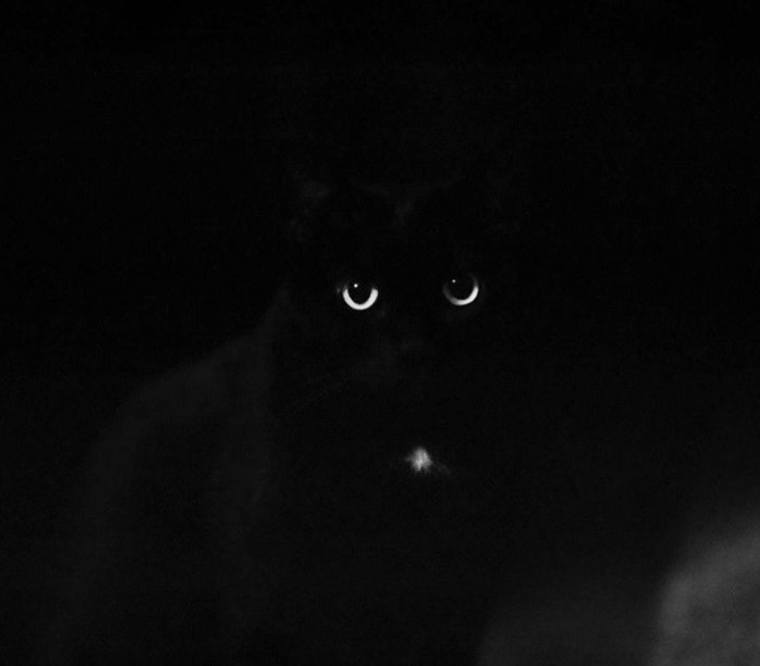 14. Moon eyes!