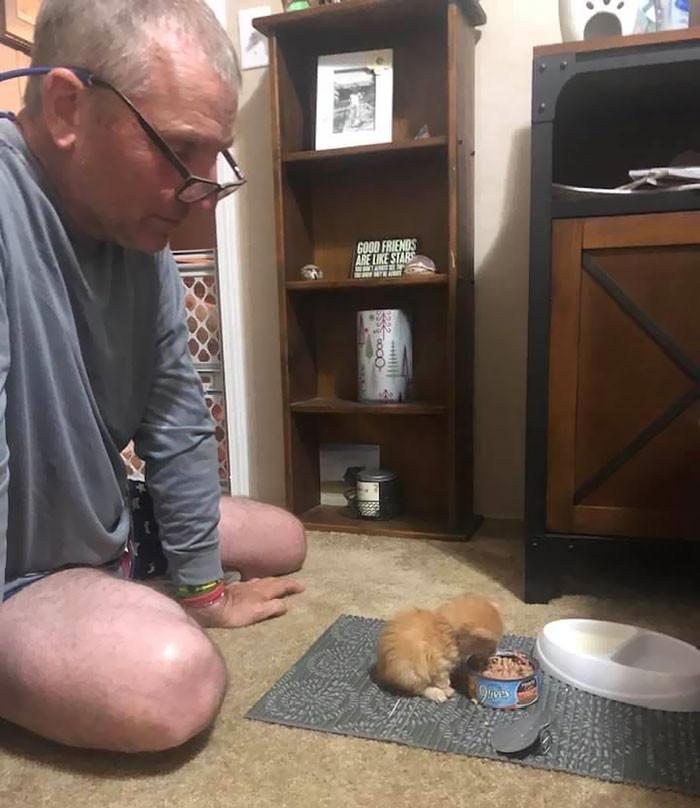 16. My Dad Just Got A Kitten
