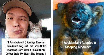 Heartwarming Rescue Pet Photos That Show Why It's So Important To Give An Animal Another Chance