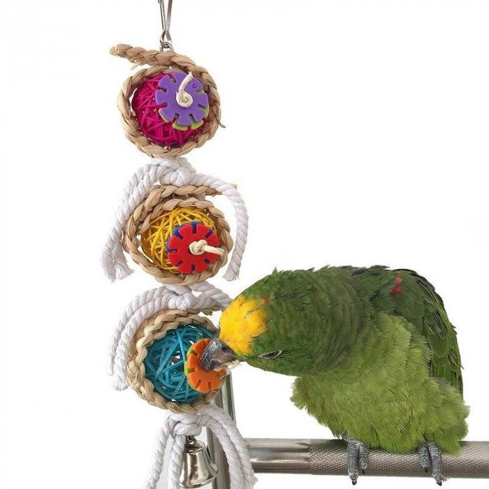 7. Colorful Bird Chew Toy