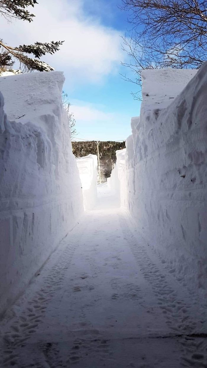 This is what a driveway in Newfoundland looks like.