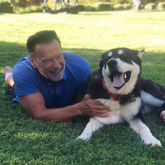 5. Arnold Schwarzenegger & Dutch