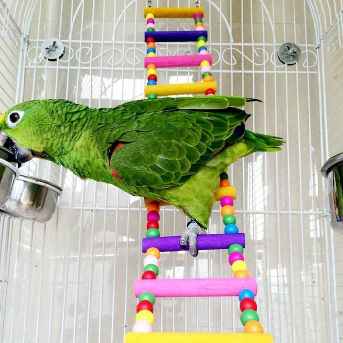 6. Wood Climbing Ladder for Birds