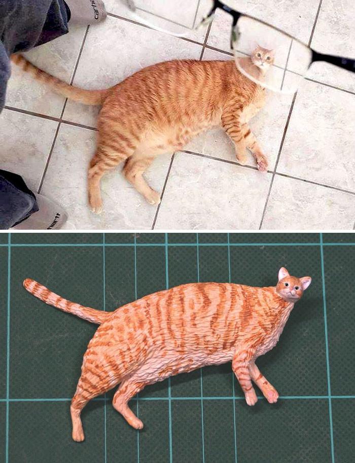 #8 Mini-Head Cat