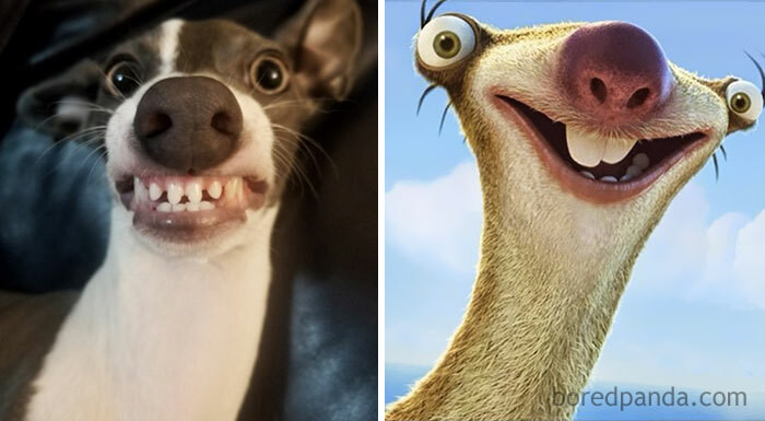 24. Sid from Ice Age