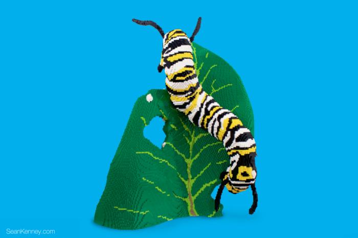 20. Caterpillar