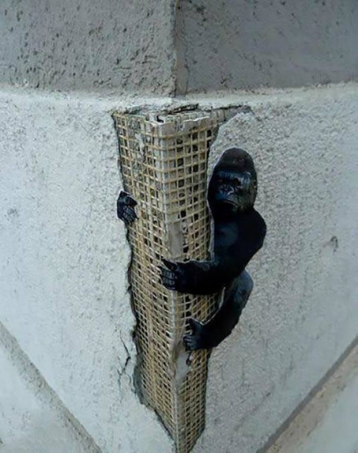 #4 Mini Kong