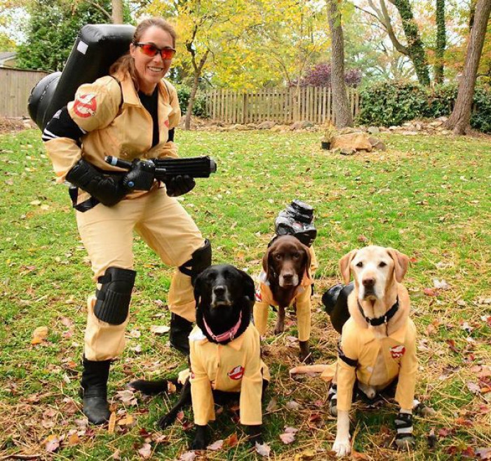 #47 I Heard They Were Remaking Ghostbusters With B*tches But This Is Ridiculous