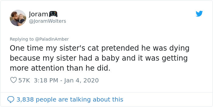 People began commenting with their own stories of how their pets made them think they were dying.
