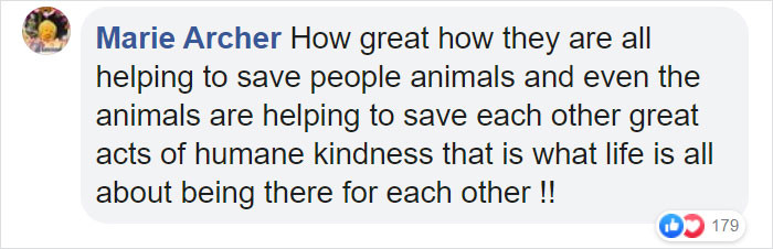 Kindness makes the world go round. The comments poured in.