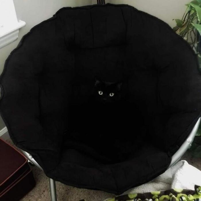 11. A black hole