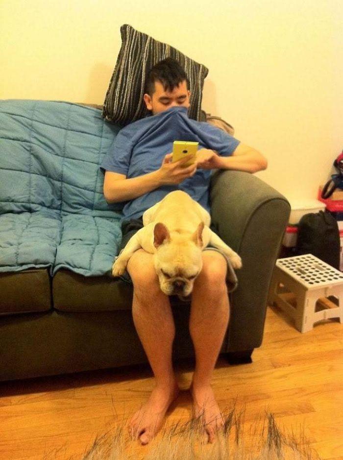 #42 My Dog Farts In Her Sleep