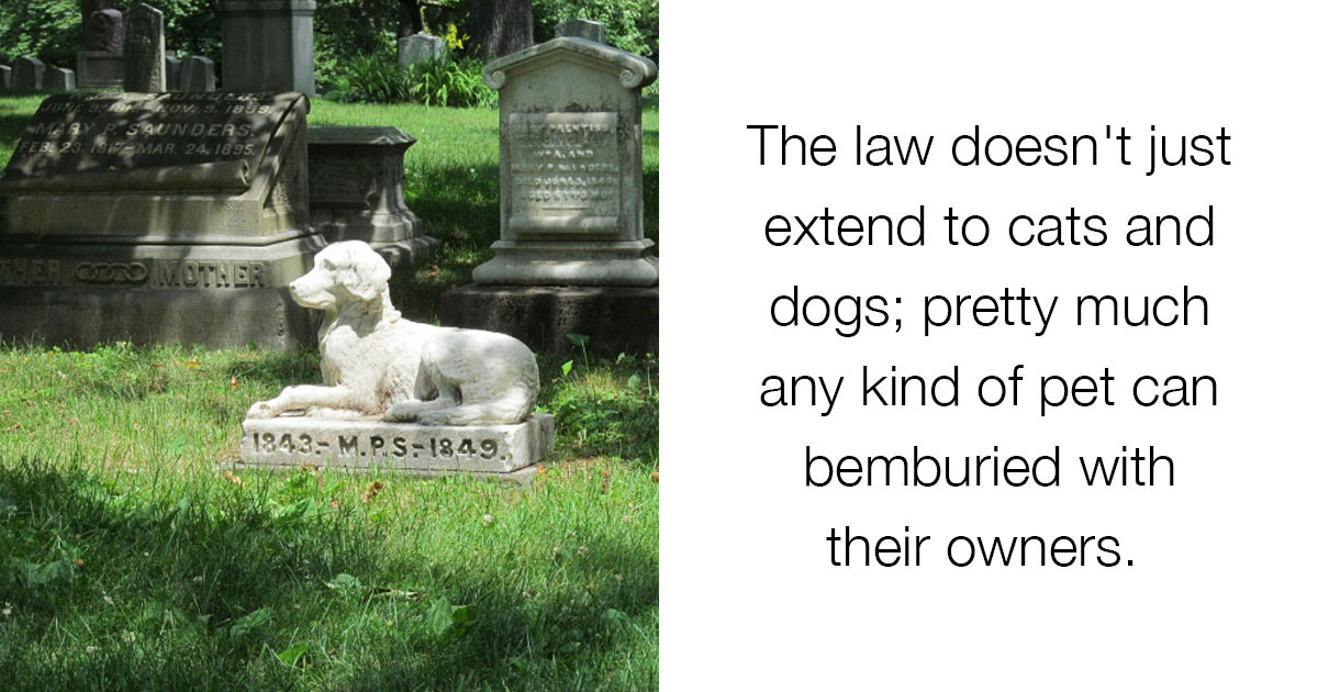 A New Law Now Allows Humans To Be Buried With Their Pets