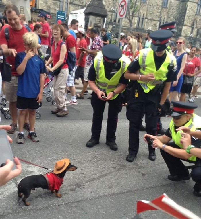 13. Canadian Police On The Job