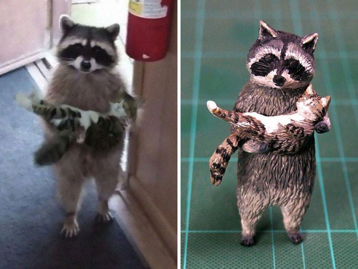 #1 The Kitten Rescuing Raccoon