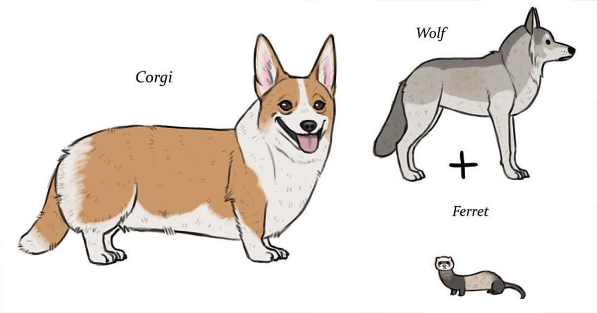 Artist Creates Compelling Illustrations That Give Interesting Origins to Dog Breeds