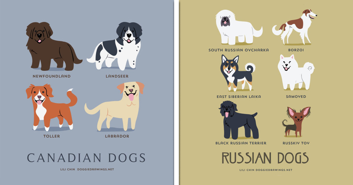 "If You're Obsessed With Dogs, Then You Will Absolutely Love This Guide To The ""Dogs Of The World"""
