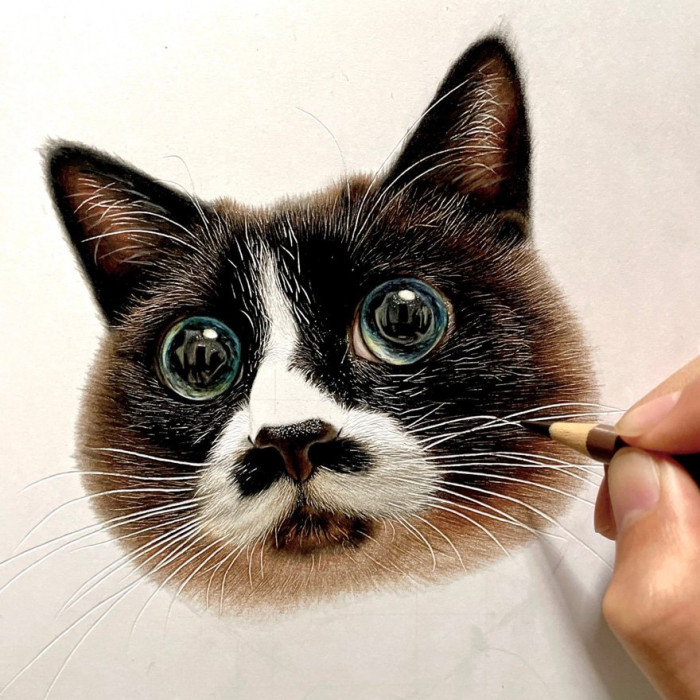 Check out at the detail in the cat's eyes.