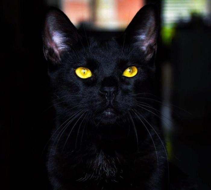 13. Is this Salem?!