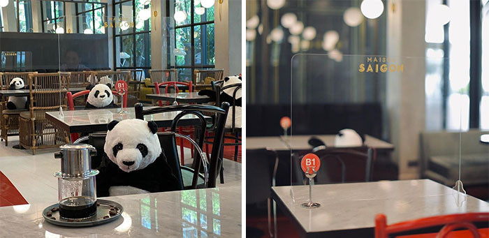 4. Thai restaurant added pandas and clear panels to help people practice social distancing