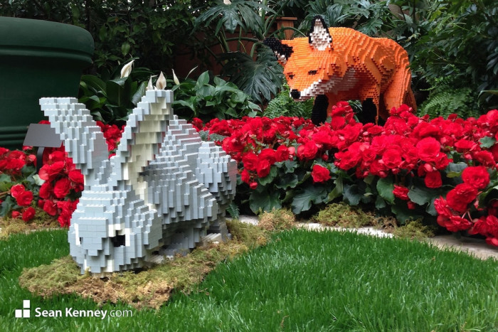 1. Sean Kenney and his team use Lego pieces for creating stunning animal sculptures.