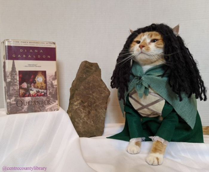 Horatio is such a great model that the library now has over 6,000 followers on Instagram.