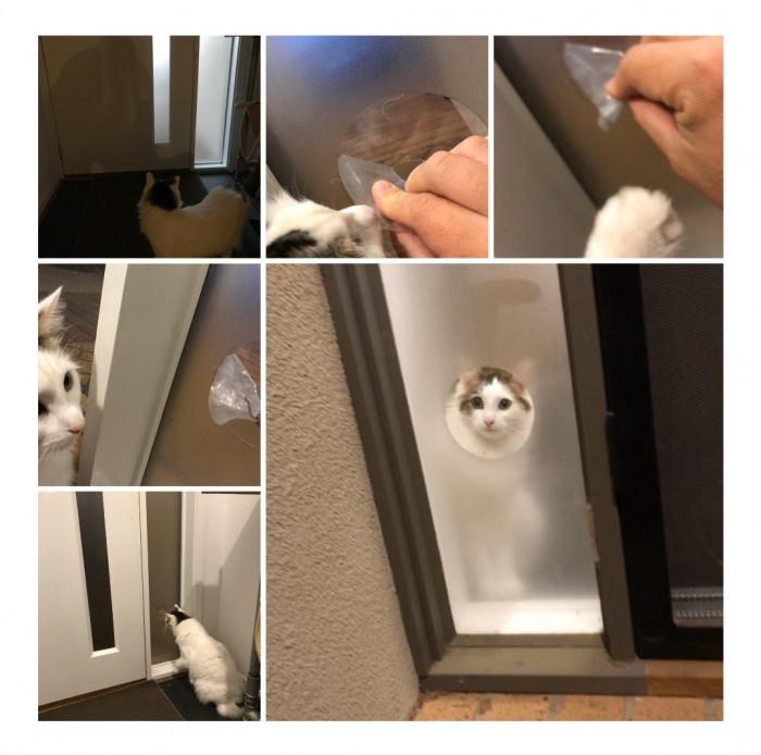22. Peeping Tom