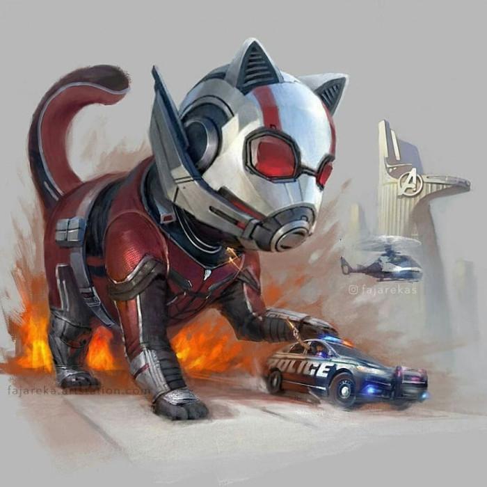 1. Ant-Cat
