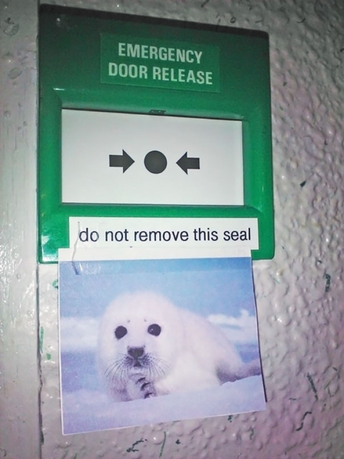 #21 Do Not Remove This Seal