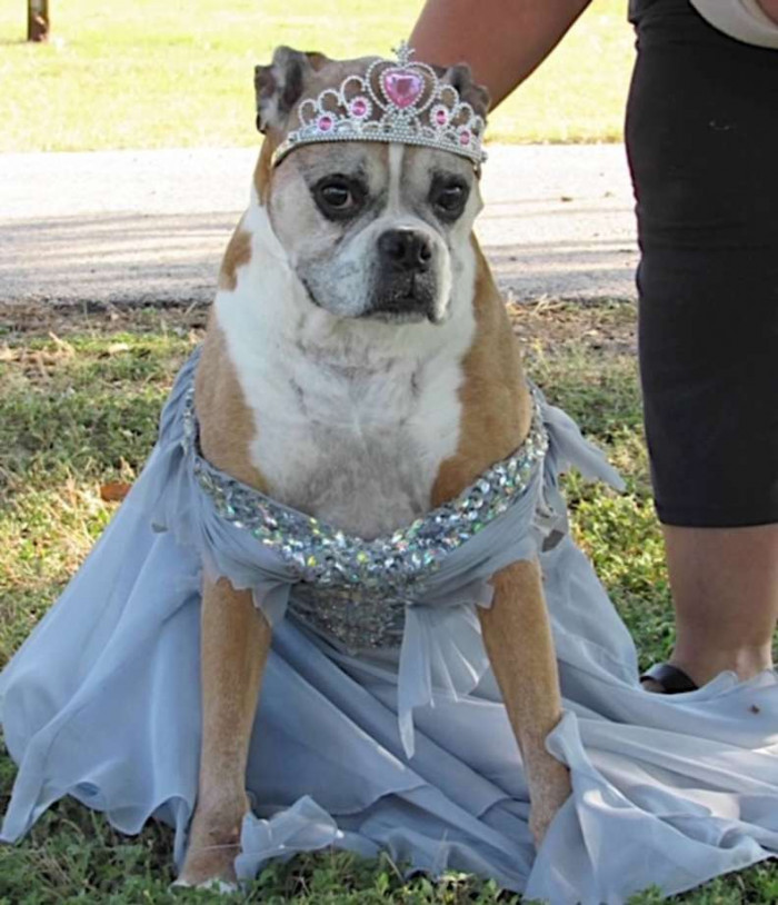 Of course, prom wouldn't be complete without a prom queen.