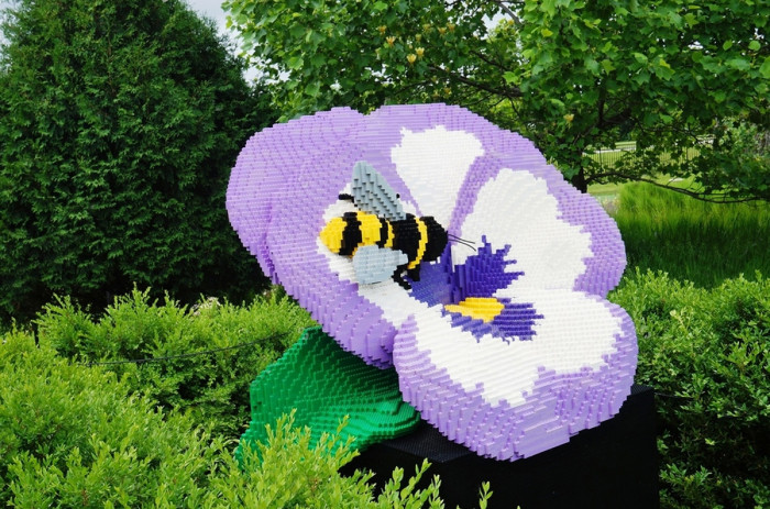5. Pansy and Bee